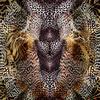 Leopard Skins 2 (Original)