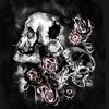 Skulls (Original)