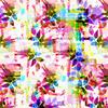 Rose Collage (Original)