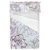Hand Drawn Asters in Seamless Pattern (Bed)