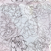 Hand Drawn Asters in Seamless Pattern (Original)