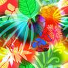 Rainbow Garden (Original)