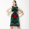 Pteridophyta (Dress)