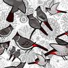 Bulbul Birds in the Bushes (Original)