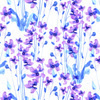 Wild Violets (Original)