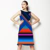 Future Stripe (Dress)