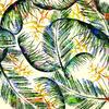Tropical Foliage (Original)