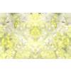 Yellow Daisies (Original)
