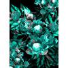 Flower Opulence (Original)