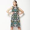 Jungle Zebra (Dress)