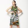 Vivid Zebra 3 (Dress)