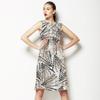 Kestrel Markings Painterly Allover (Dress)