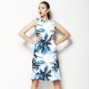 Palm Cloud 040116 B (Dress)