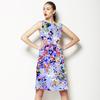 Cnr 0006 (Dress)