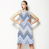 Ornate Chevron Zig Zag (Dress)