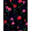 Dark Roses (Original)