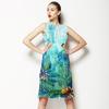 Cnr 0017 (Dress)