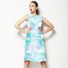 Blured Paisley (Dress)