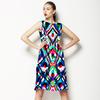 Color Ikat (Dress)