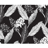 Lithograph Stories - Monochrome Illustrations Floral (Original)