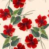 Hibiscus (Original)