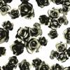 3 Colors - Roses Photographic Neutral Floral (Original)