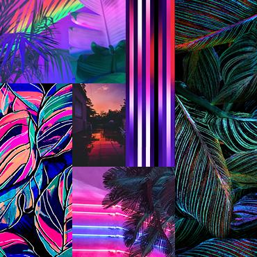 Neon Tropics