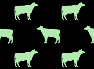 simple cow vegan silhouette two colors mint green on black