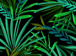 Lush Green 3d Effect Tropical Leaves Print By The Pattern Lane Seamless Repeat Royalty Free Stock Pattern Patternbank I found that many data such as amount of rainfall, vegetation belt, type of trees on particular vegetation. patternbank